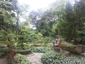 Chengdu peaceful temple gardens