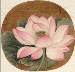 Lotus out of water Song Dynasty original