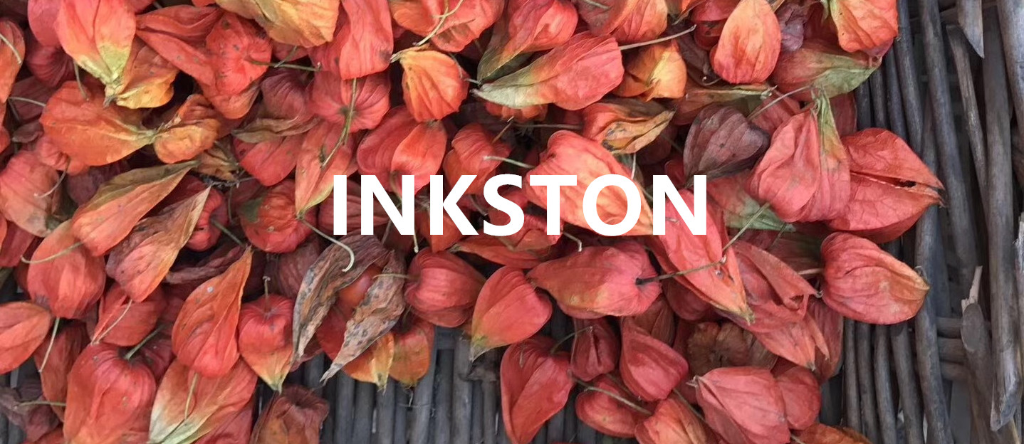 inkston-newsletter-autumn