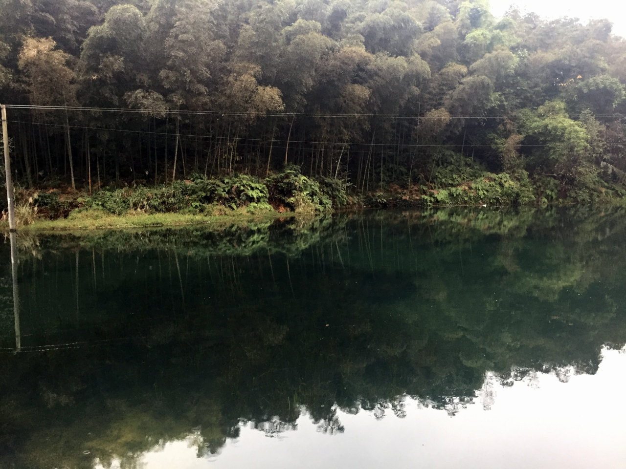 ShuNan Bamboo Sea 蜀南竹海, Bamboo Life