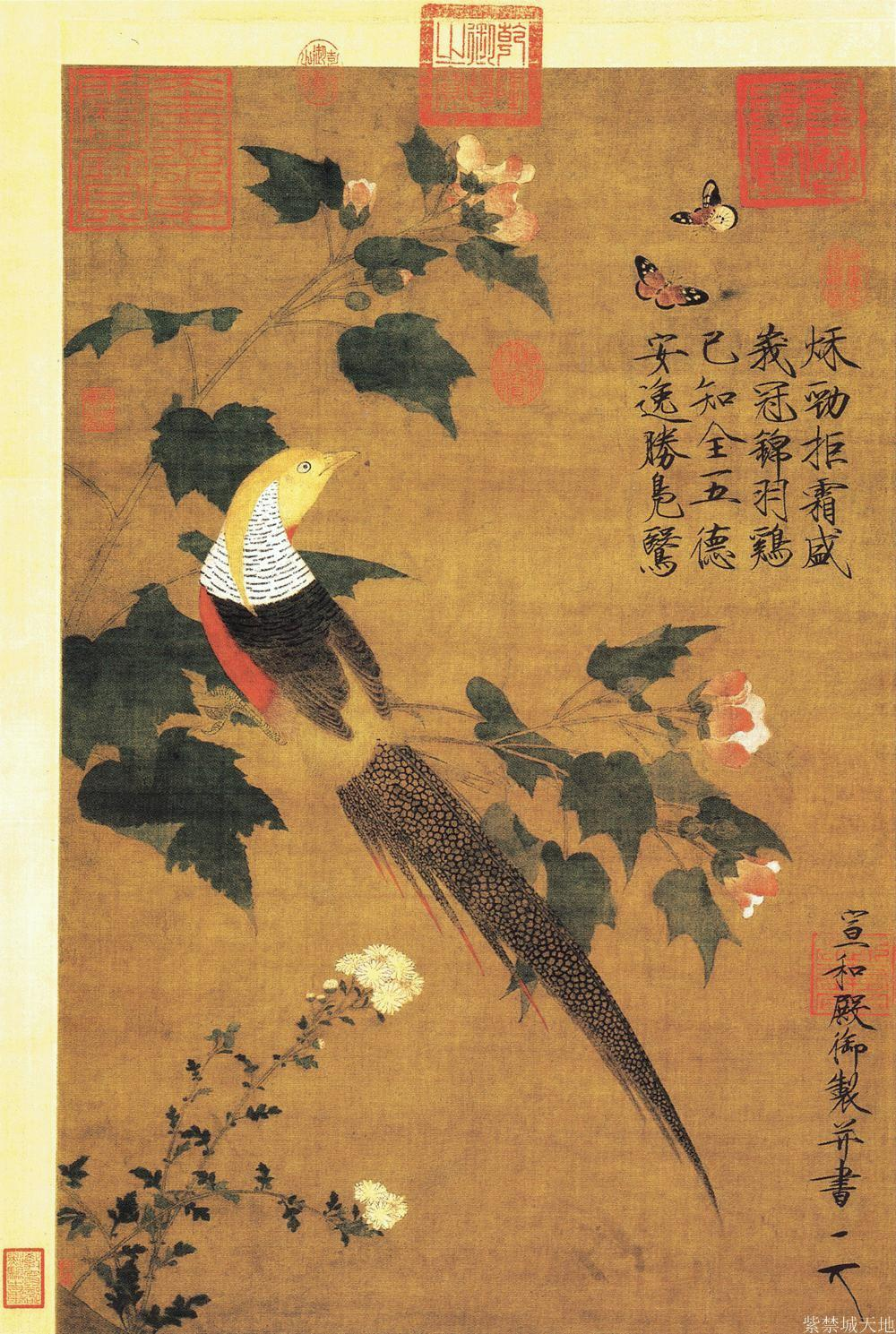 Songhuizong bird