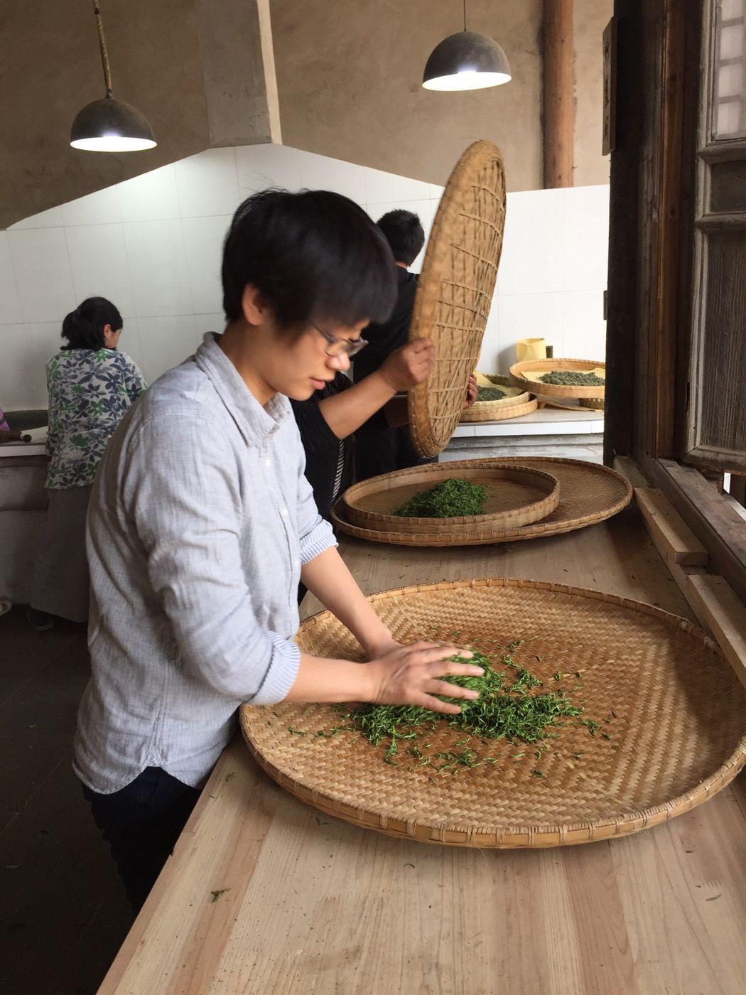 JiJi is preparing tea leaves